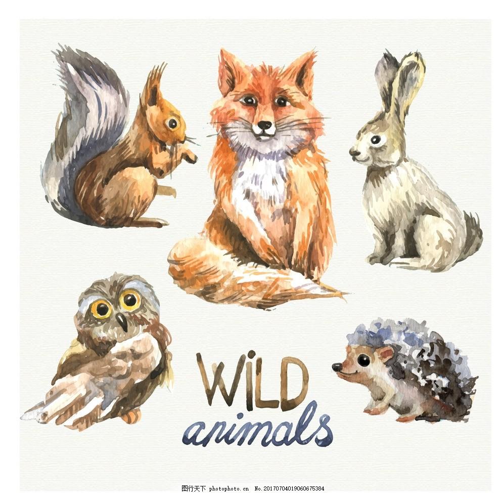 野生动物 水彩动物 水墨 水彩绘 矢量素材 手绘动物元素 狐狸 兔子 松