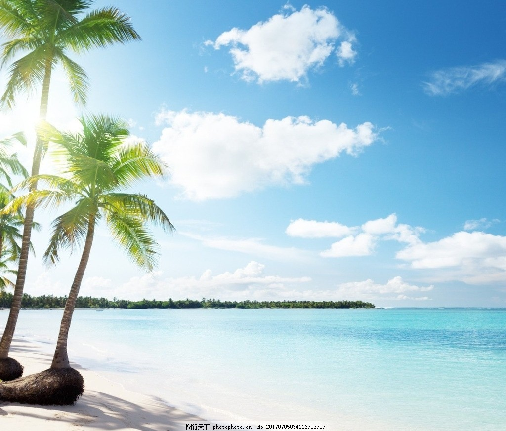 三亚椰树 椰树 三亚 海边 沙滩 阳光 摄影 自然景观 自然风景 72dpi
