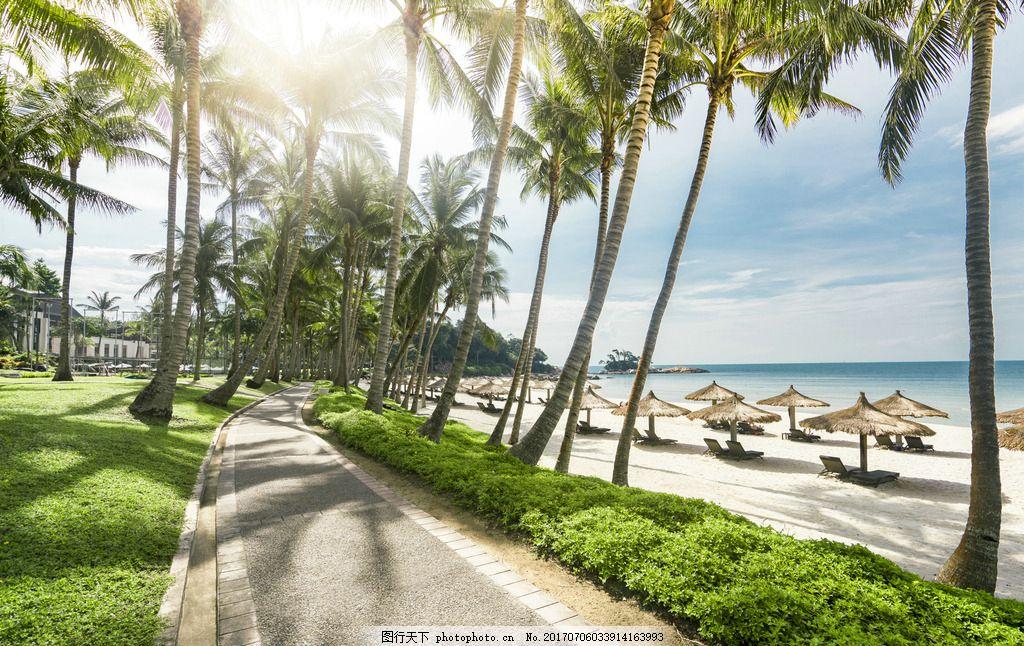 海边度假 沙滩 复古 椰子树 海洋 沙滩椅 遮阳伞 蓝天 阳光