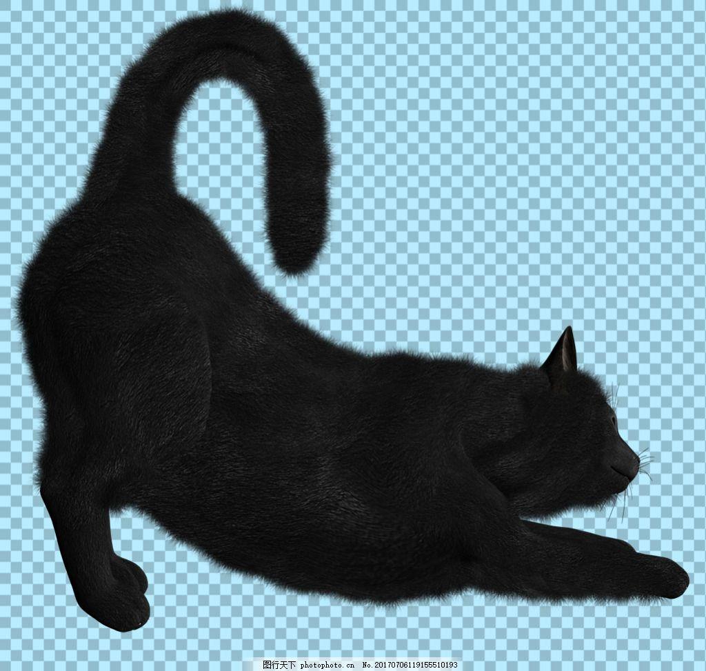 伸懒腰的黑猫图片免抠png透明图层素材 猫科动物 可爱动物图片 家禽