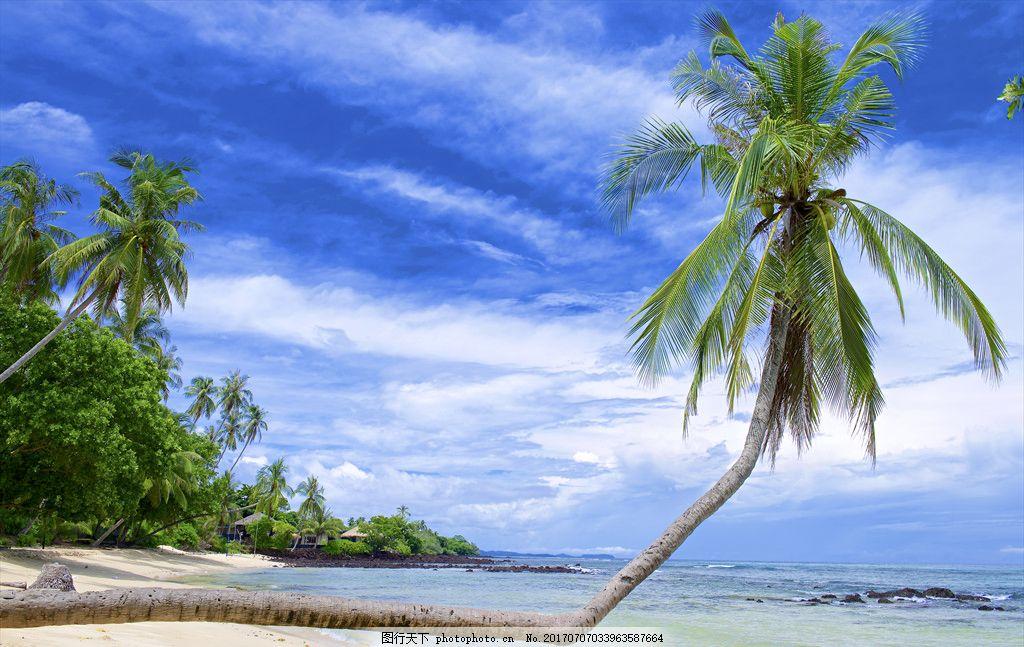 泰国马岛 旅游 小岛 天空 海景 泰国 玛岛 度假 椰子树 沙滩 摄影