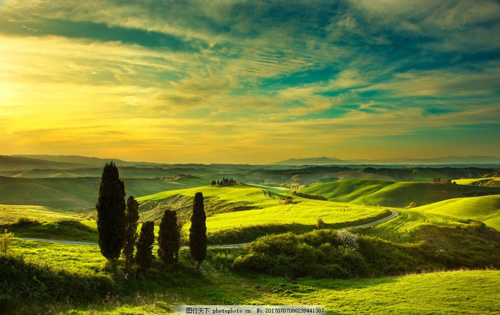 田园风光 草场 草坪 树木森林 天空 草原 唯美风景 蓝天 白云