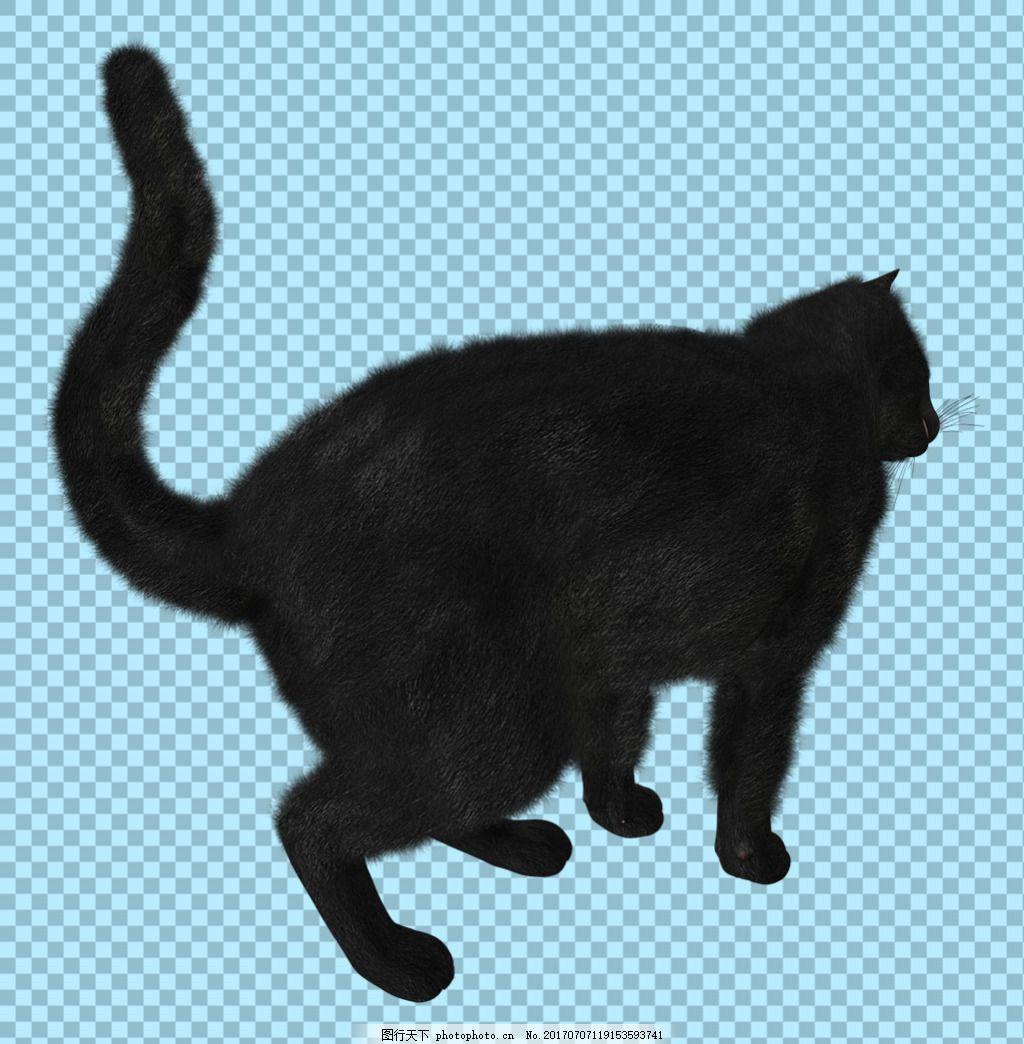 黑色猫剪影免抠png透明图层素材 蝙蝠素材 可爱动物图片 家禽 家畜 动