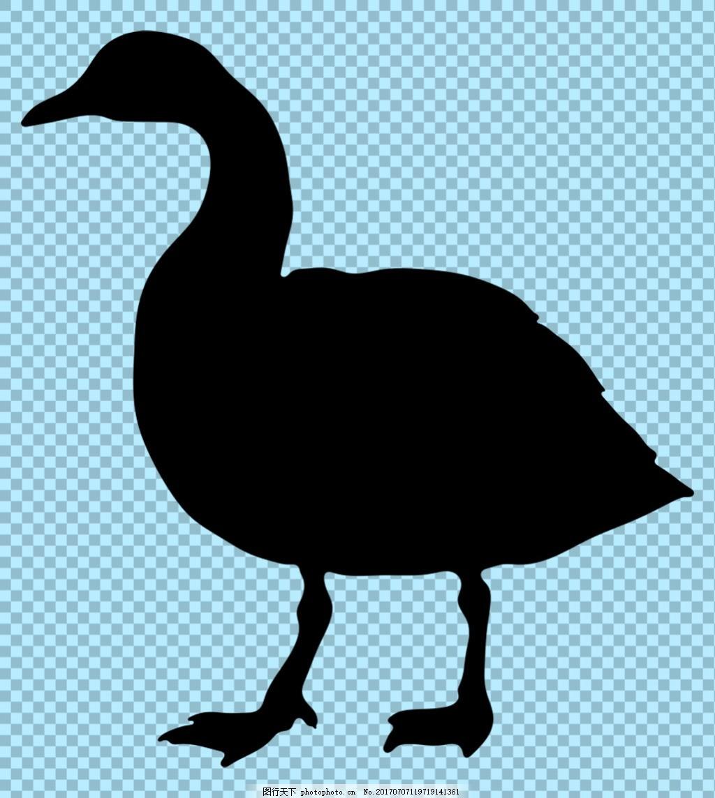 黑色野鸭剪影免抠png透明图层素材 鸟类动物 可爱动物图片 家禽
