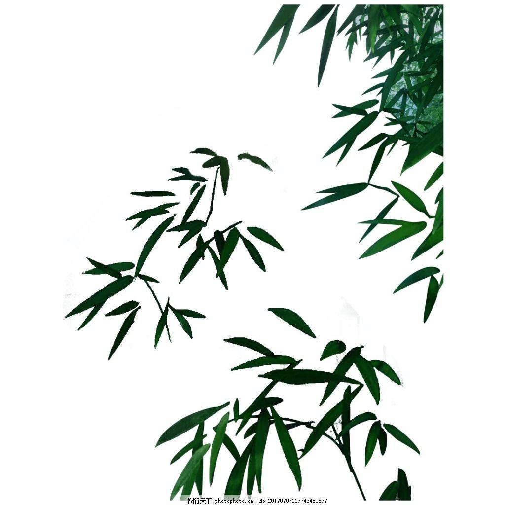 手绘绿色竹叶元素 水墨 风景画 绿色树叶 免抠