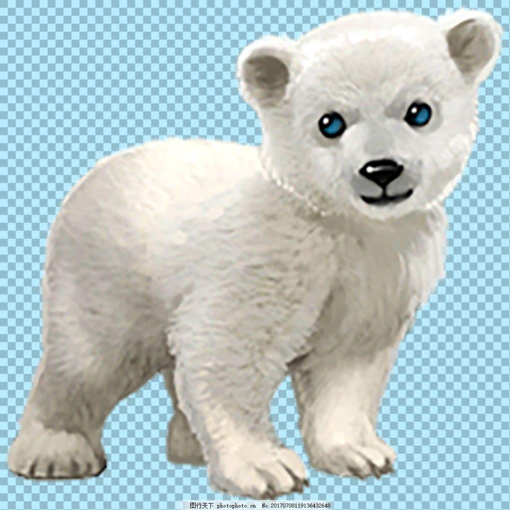 手绘可爱小北极熊免抠png透明图层素材