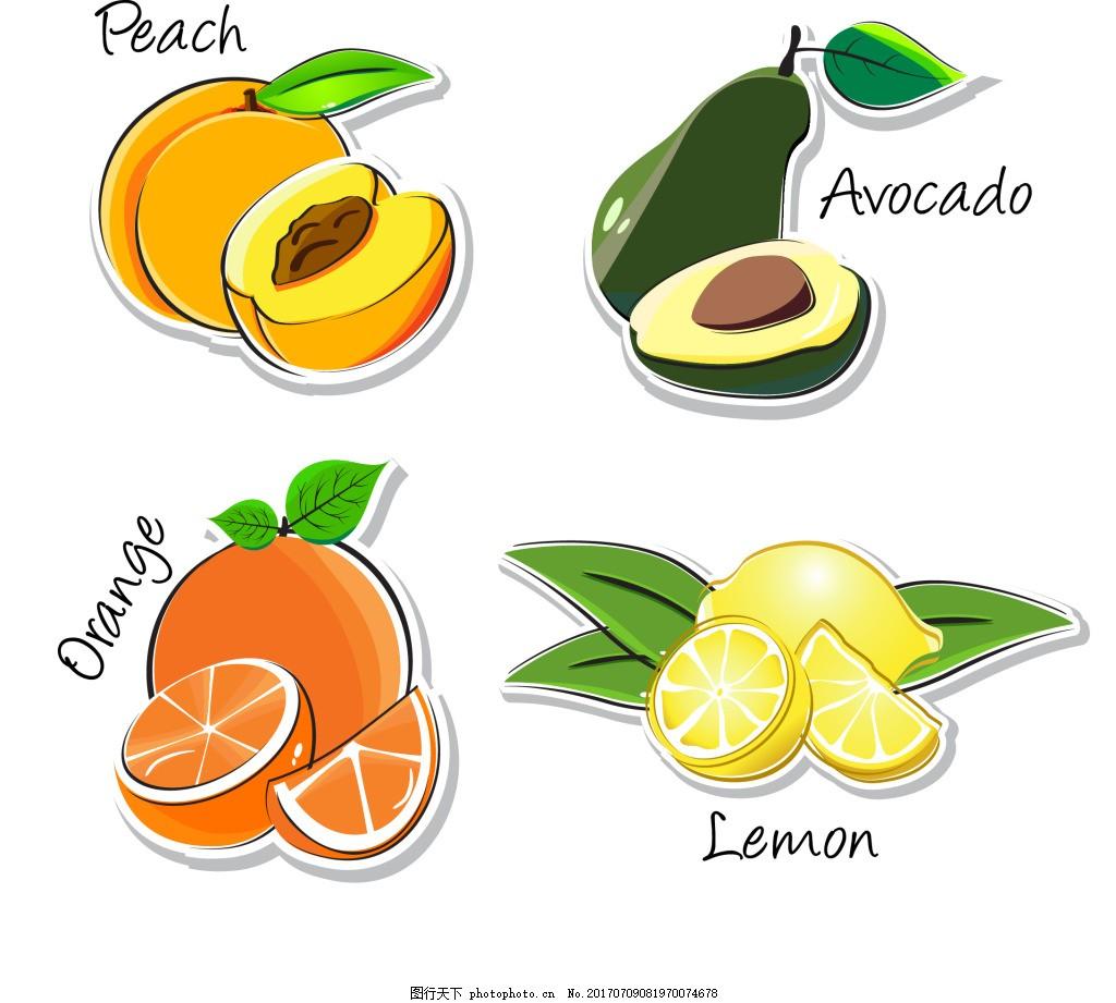 手绘各种水果插画 桃子 牛油果 桔子 柠檬 手绘 水果 插画