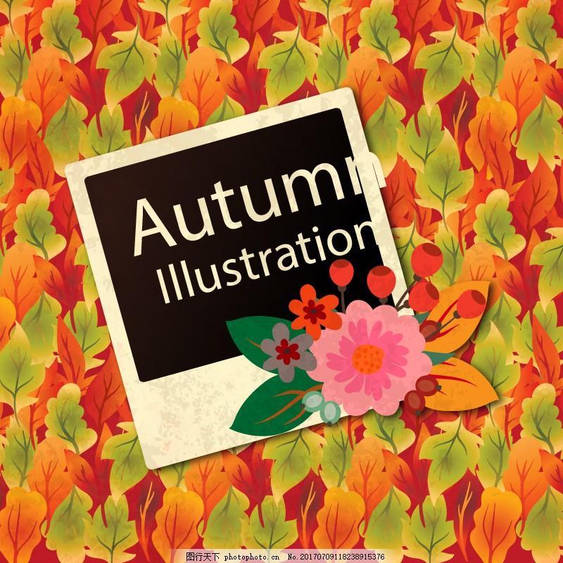 秋天素材背景 秋天背景素材 树叶素材 树叶背景图 贺卡 鲜花 落叶