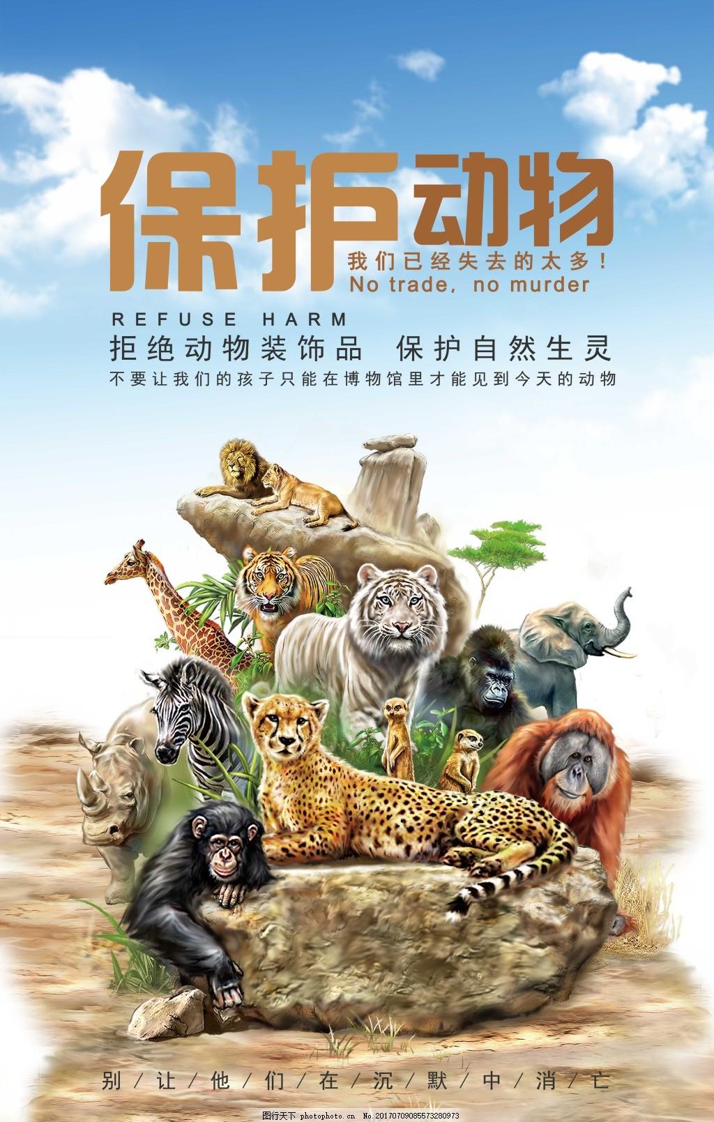拒绝动物制品海报 保护自然 保护动物海报 单页 折页 宣传单 公益性