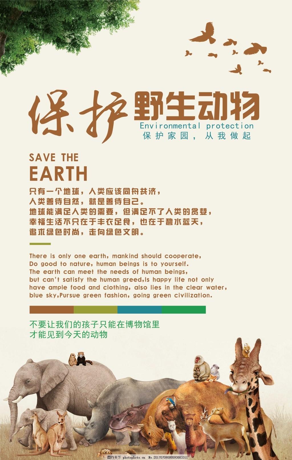 海报 保护动物 珍爱动物 野生动物 动物园海报 宣传单 室内公益广告