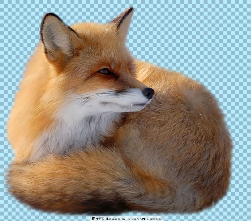 最萌兔子简笔画