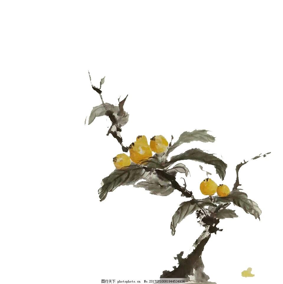 枇杷国画工笔画 工笔画风格的枇杷 水墨画