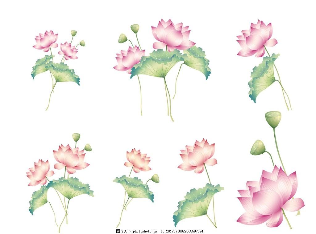 手绘荷花 初夏 荷塘 荷塘月色 莲花 中国风 水墨 荷叶 荷花插画