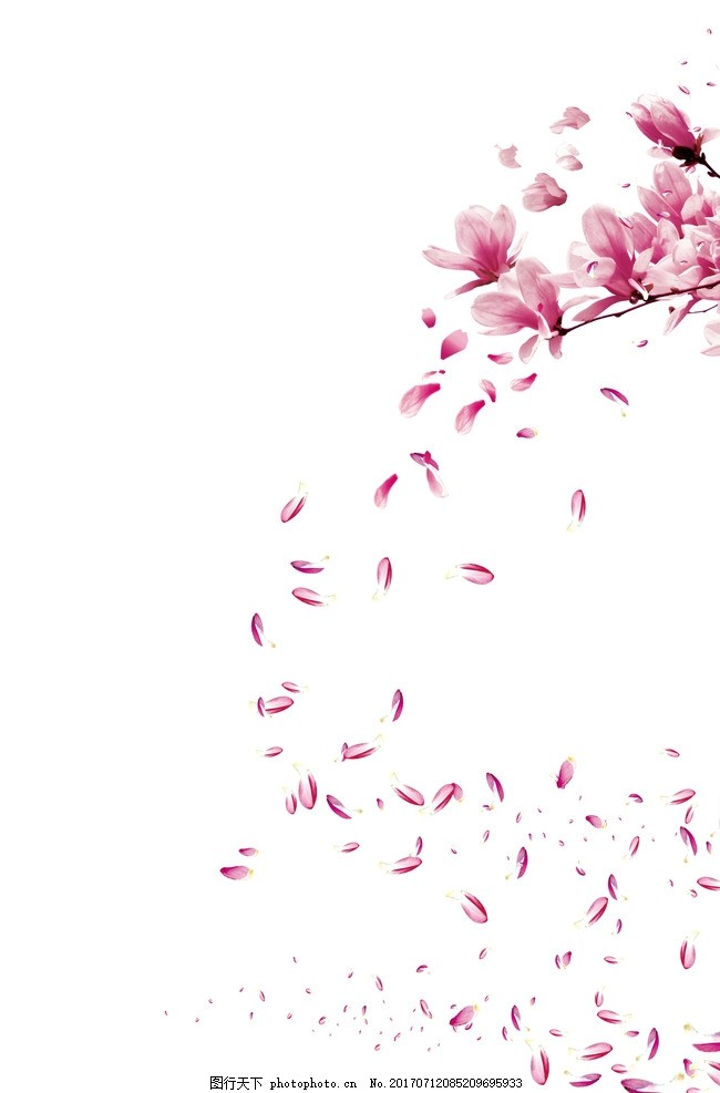 花瓣网手绘海报