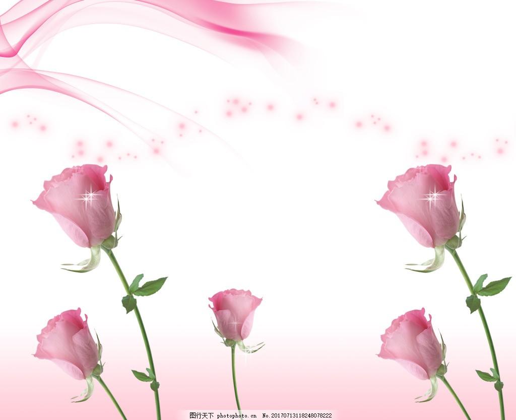 玫瑰花广告背景素材 粉色玫瑰 曲线 梦幻 星星