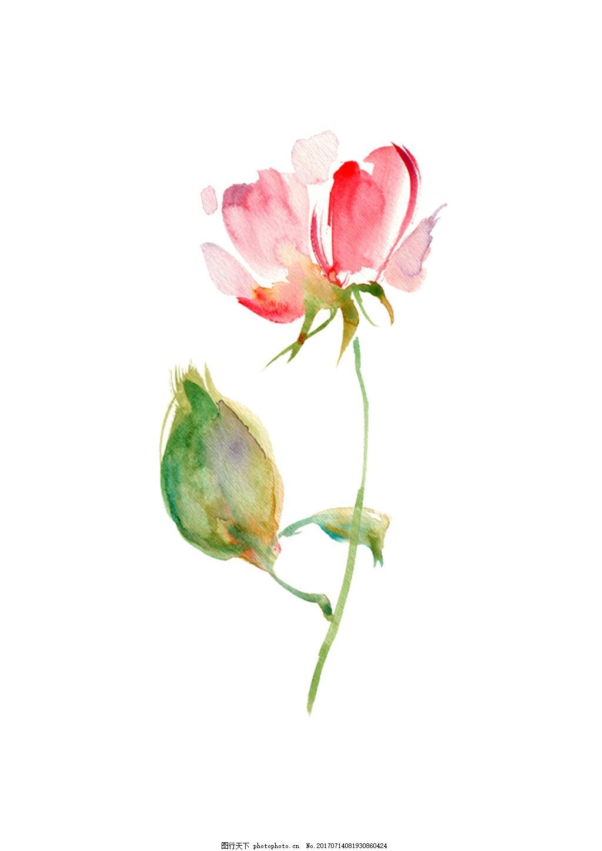 手绘小清新一支花素材