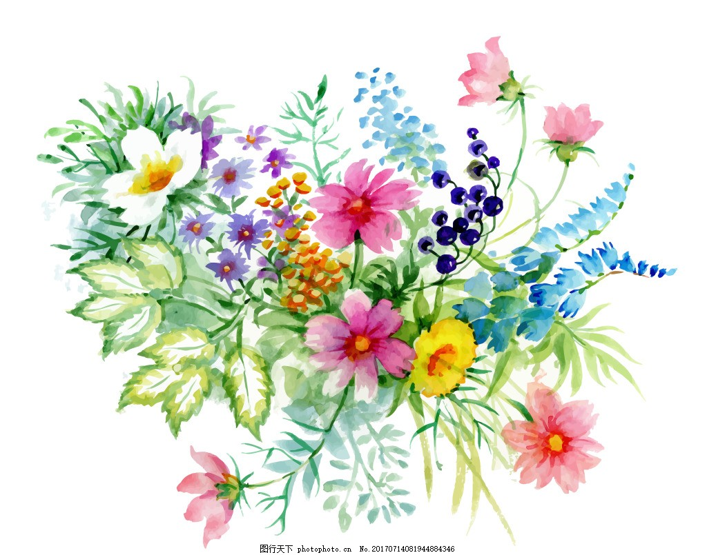 花束植物花朵水彩手绘矢量文件