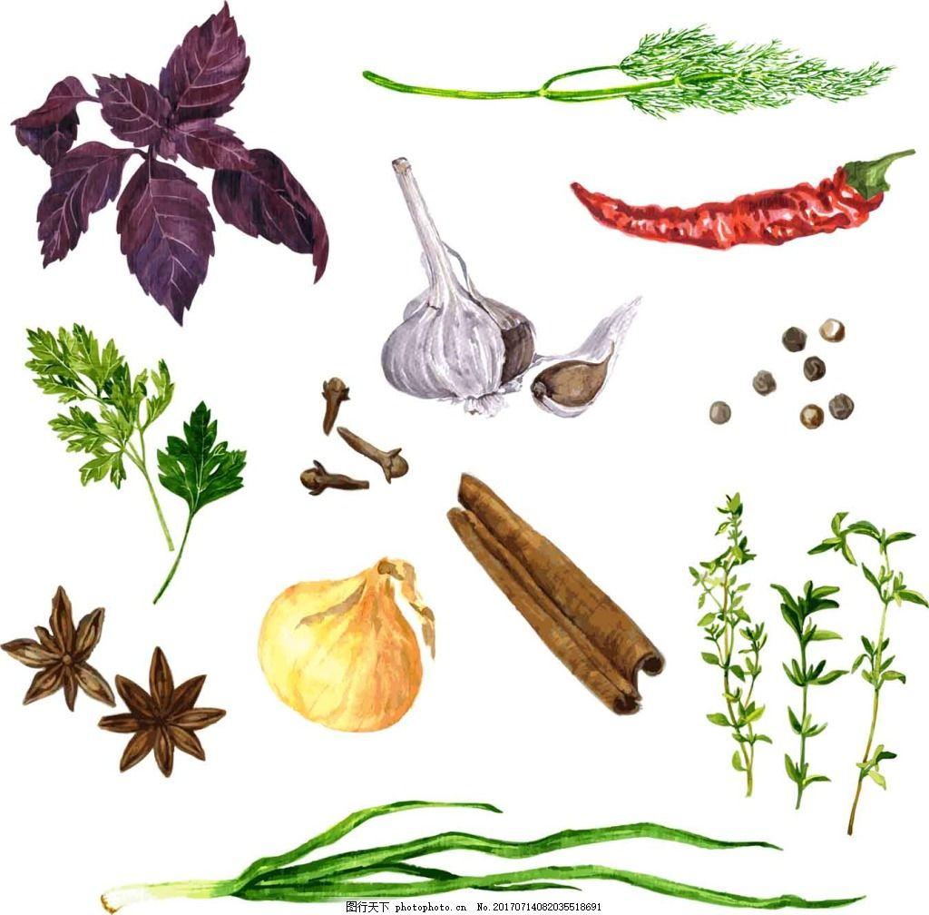 手绘食品调味品插画 紫苏叶 水彩绘 辣椒 大蒜 大葱 八角 香料
