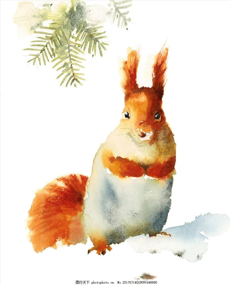 水彩松鼠 手绘动物 水彩画 水彩晕染 水彩动物 水彩手绘 手绘插图