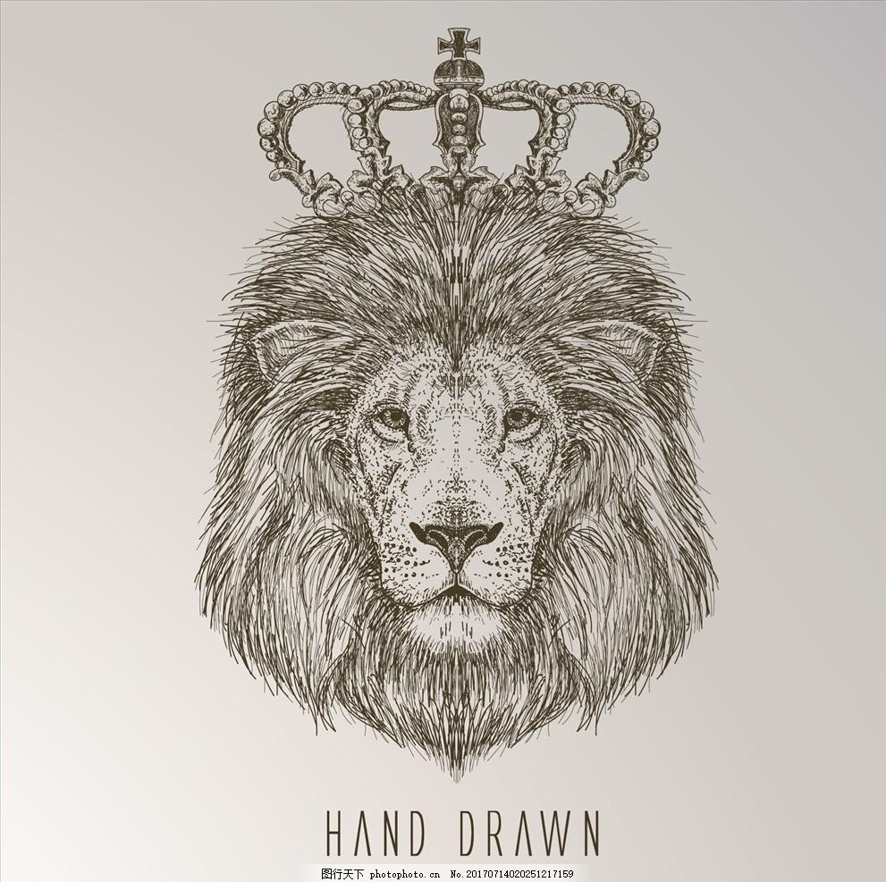 动物线描 手绘动物图案 手绘动物 素描动物 猛兽图案 猛兽 狮子 狮子