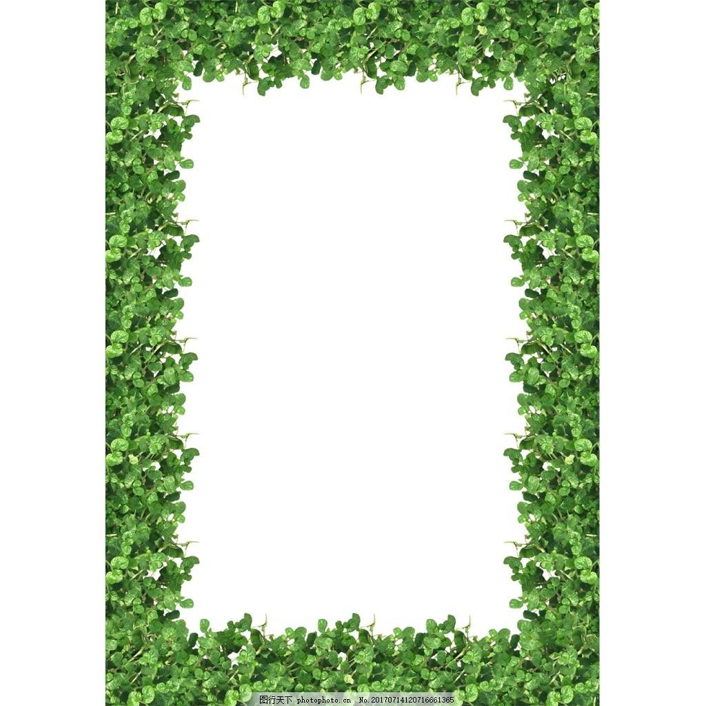 绿叶边框png元素 树叶 框框 装饰 相框 长方形边框