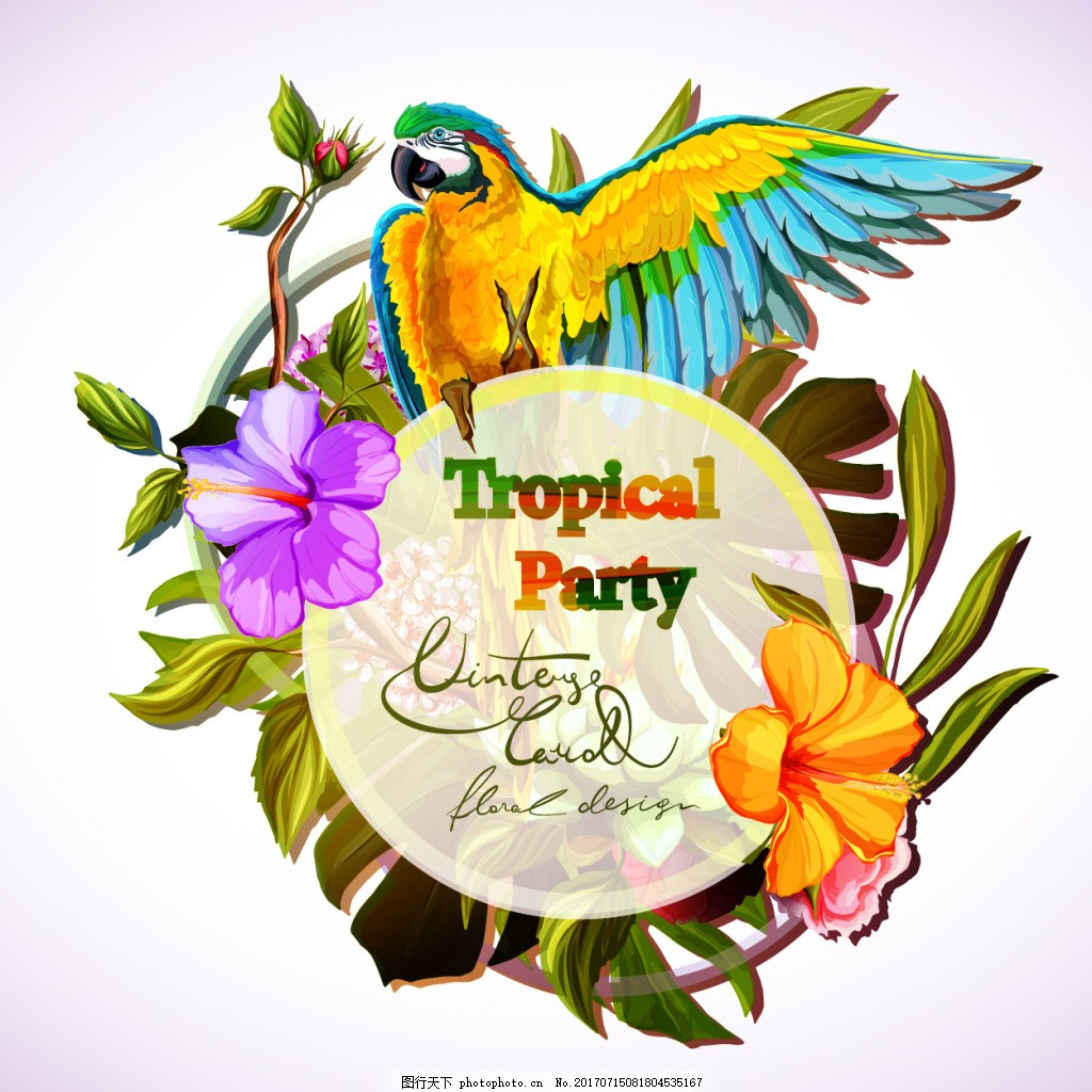 复古植物和小鸟插画 复古 手绘 水彩 植物 鹦鹉 小鸟 插画 花朵 叶子
