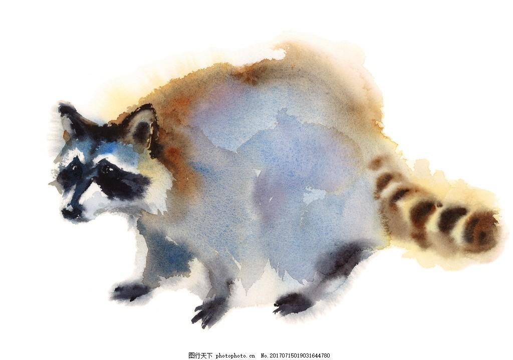 唯美 炫酷 浪漫 可爱 彩绘 彩绘动物 动物 小熊猫 设计 文化艺术 绘画