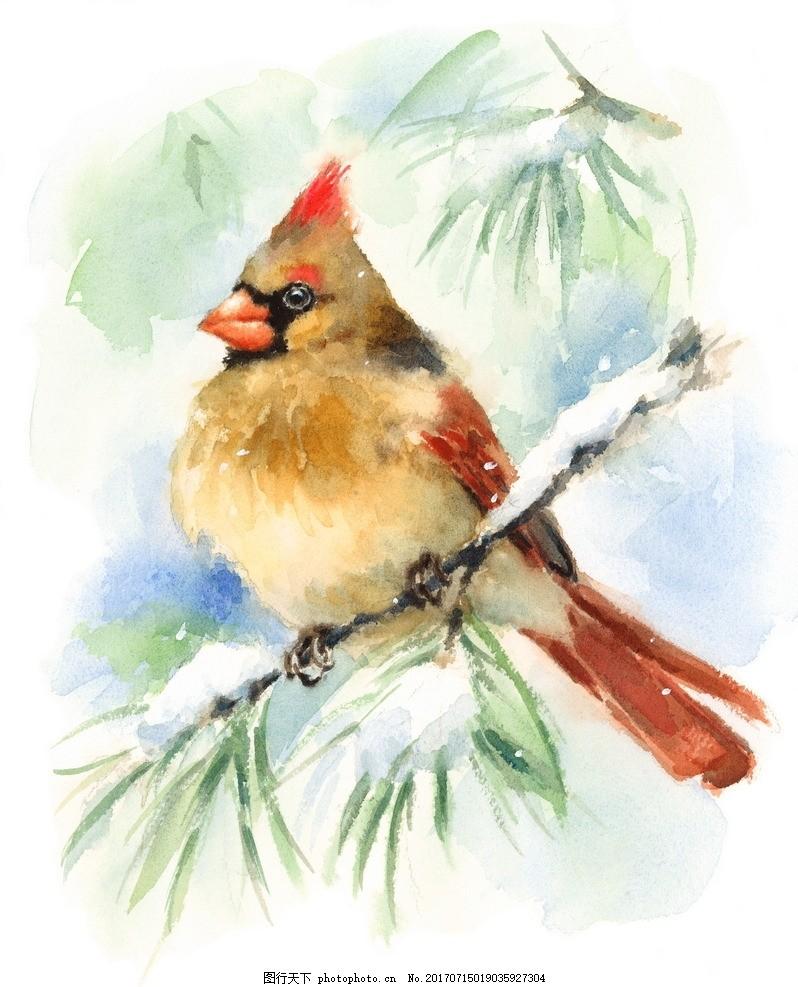 可爱 彩绘 彩绘动物 动物 小鸟 设计 文化艺术 绘画书法 300dpi jpg