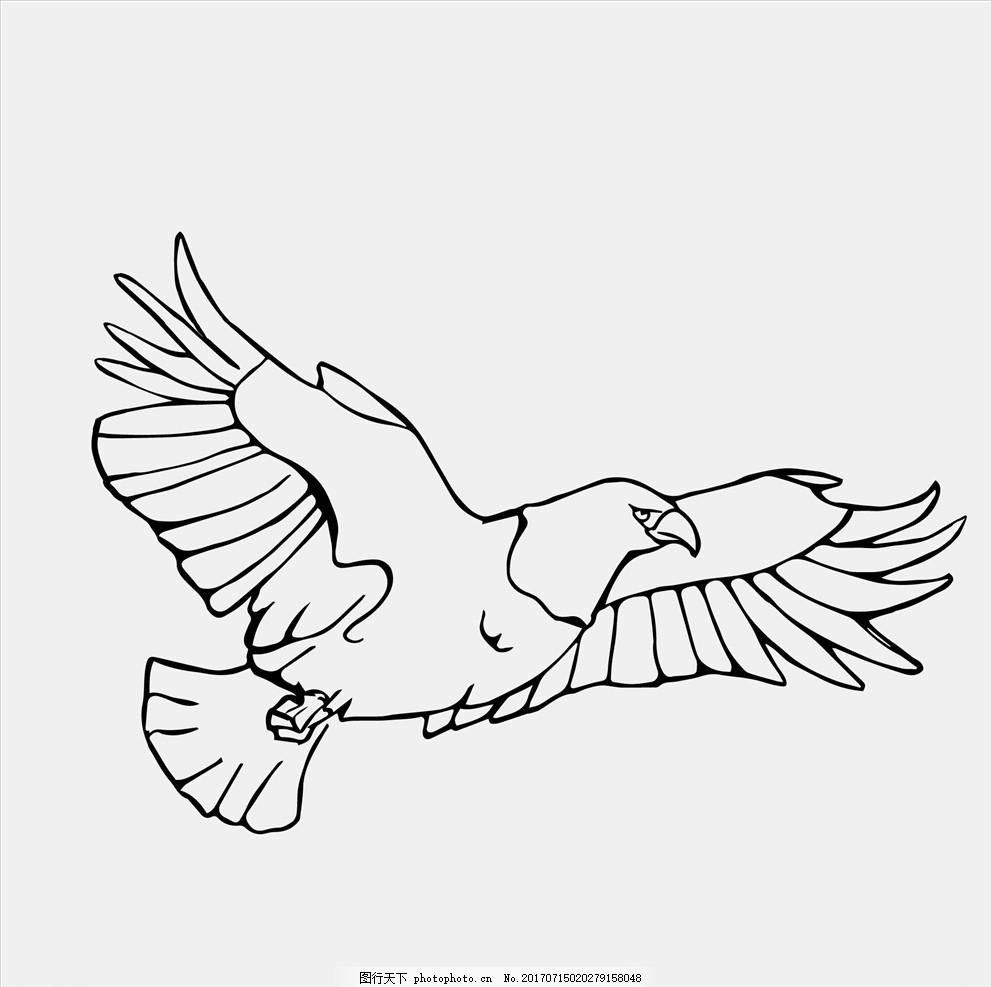 矢量小鸟 矢量鸟 矢量插画 鸟插画 鸟素材 老鹰 花鸟图 布料印花
