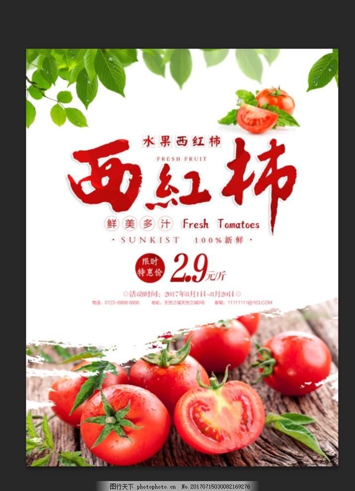 番茄画册 番茄宣传单 西红柿海报 西红柿广告 西红柿高炮 仙 西红柿