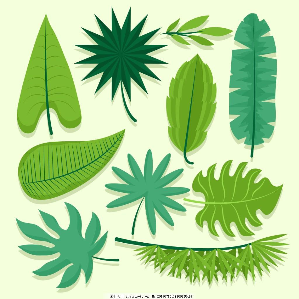 各种形状绿叶素材 绿叶 清新 树叶 淡雅 背影元素 夏季 夏天 eps 叶子