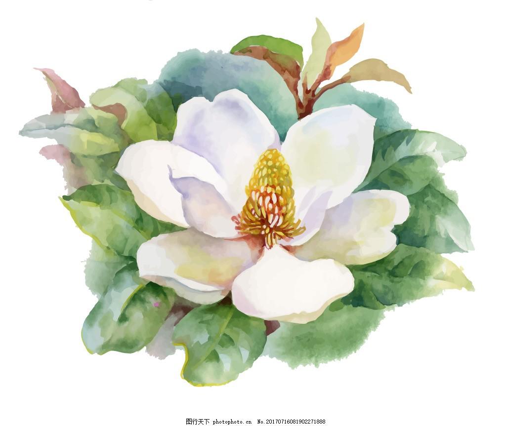 白色花朵水彩手绘矢量文件 花瓣 花园 夏天 中国风 国画 小花