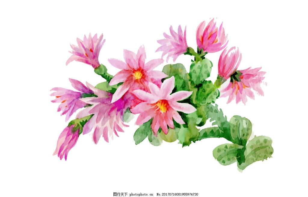 夏季粉色花朵植物花朵水彩手绘矢量文件 仙人掌 花朵 手绘 水彩 小花