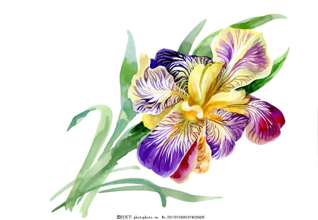 紫色花朵绿叶植物花朵水彩手绘矢量文件