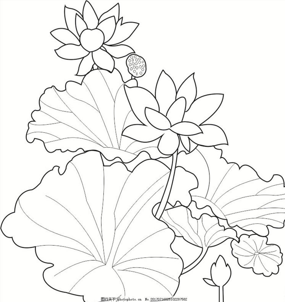 荷花矢量图 荷叶 线条 黑白 植物 花卉