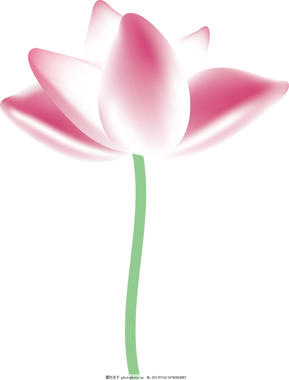 荷花素材矢量荷花图标 花卉 花朵 植物 插画 标签 背景 海报