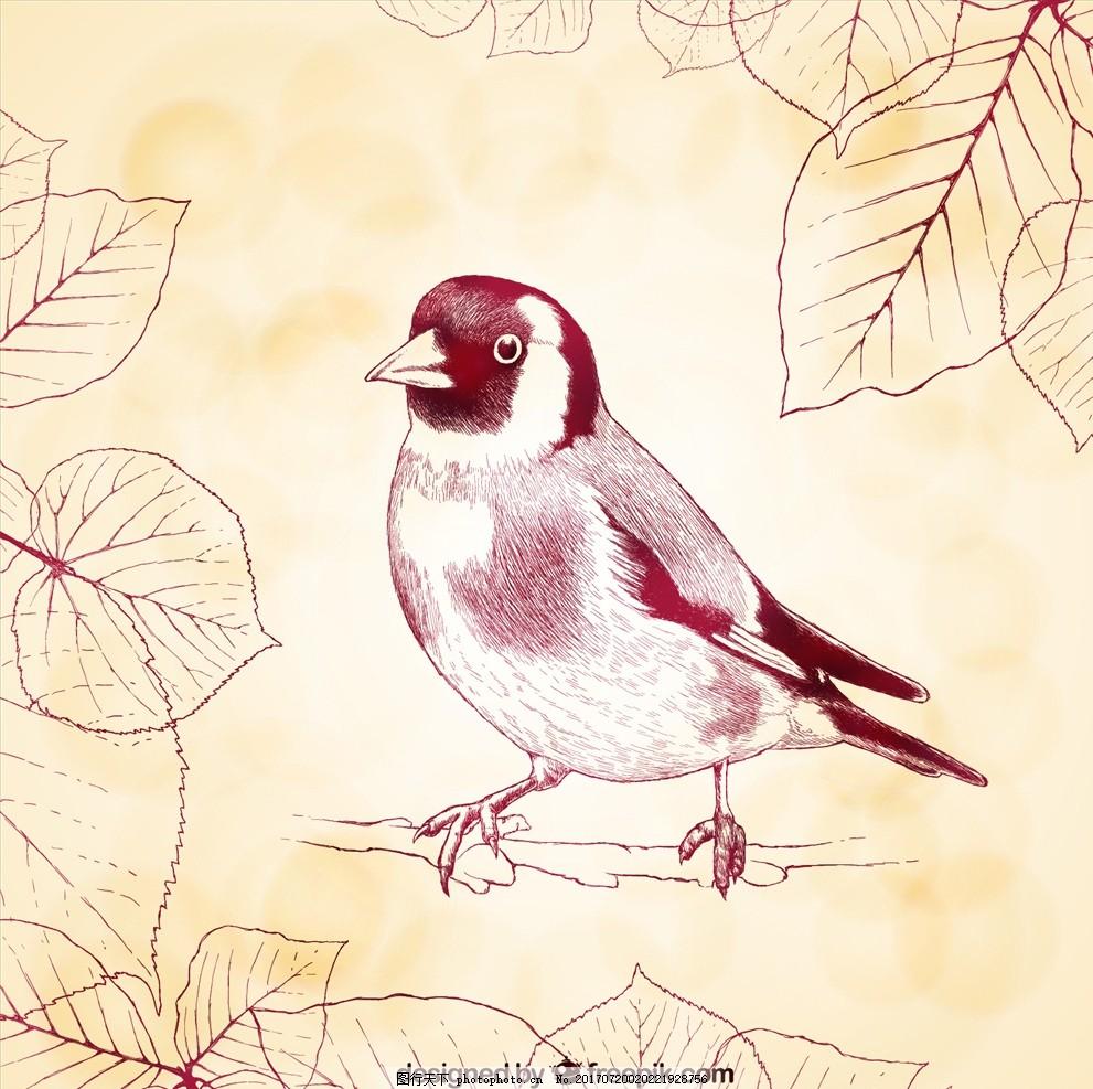 动物插画 插画 儿童绘本 卡通动物漫画 扁平动物 卡通漫画 q版动物