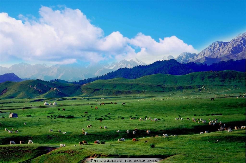 草原蓝天背景 鹿角湾 雪山 草原 风景图 蒙古包 树林 蓝天白云 摄影