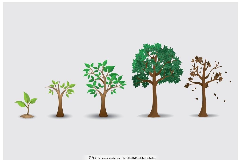 生长 盆栽 盆景 园艺 园林 防辐射 植物 花草 绿色植物 盆景海报 盆栽