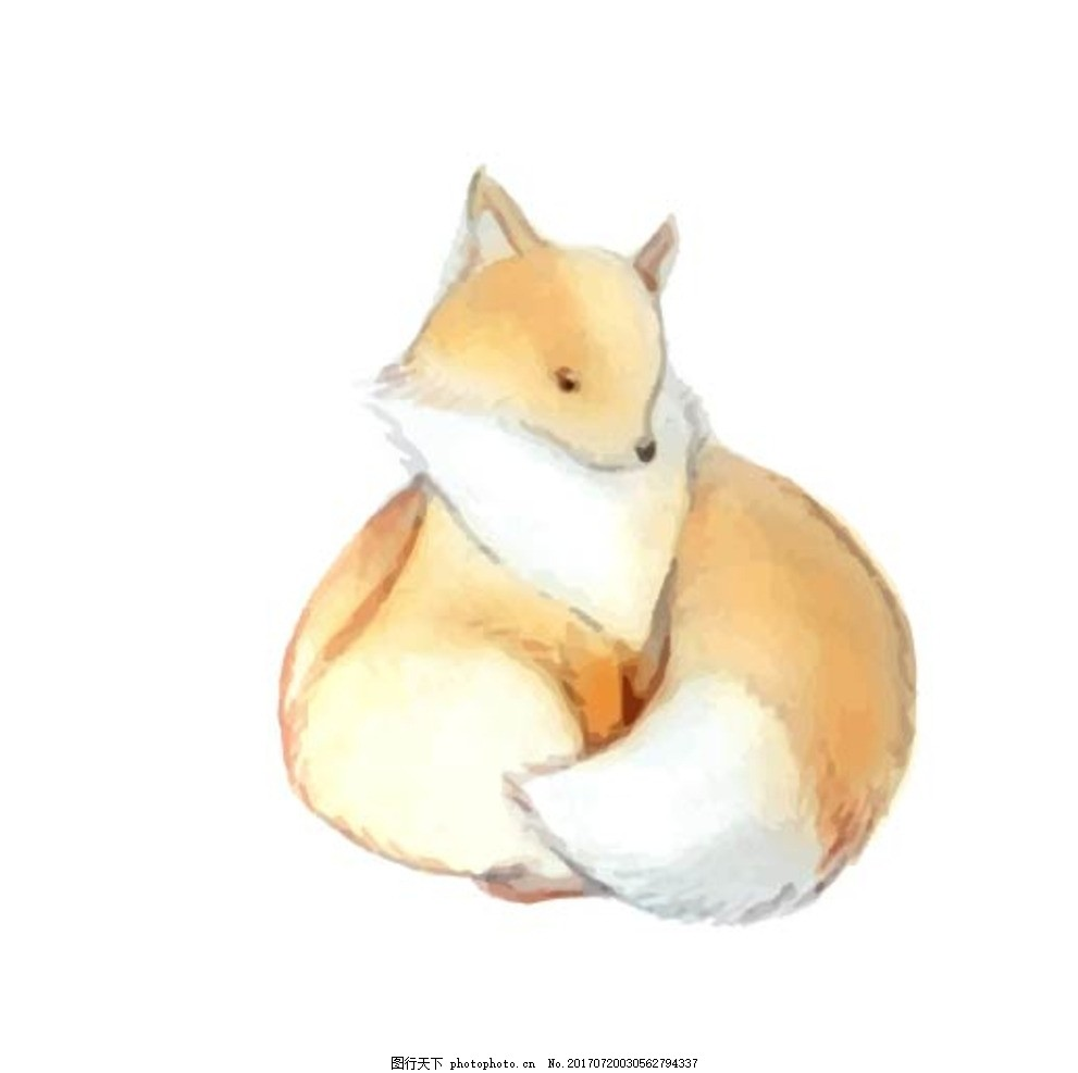 卡通狐狸,卡通动物 动漫卡通 可爱 贺卡 动物插画-图