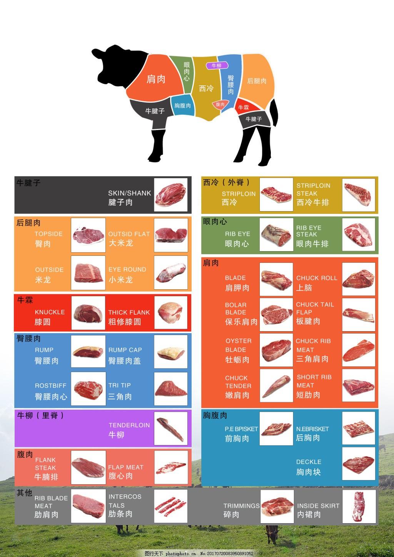 澳洲和牛部位分解图展板 部分介绍 宣传单张 产品介绍 牛肉介绍