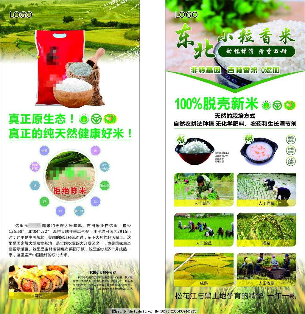 大米香米简介促销展架 大米生长过程图片展示 大米具体介绍 绿色代表环保