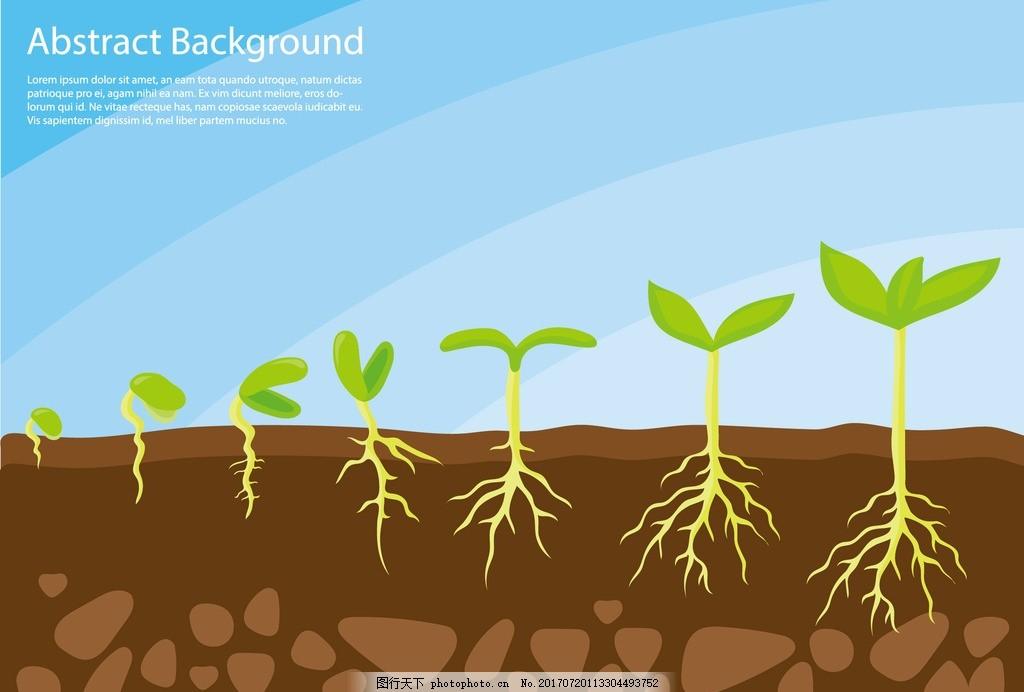 树发芽的矢量图