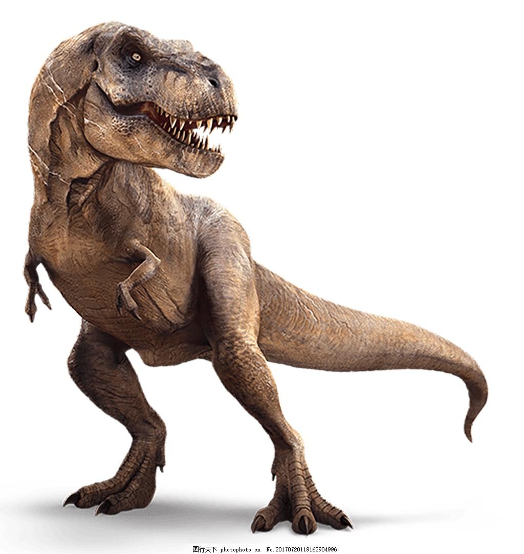 一只恐龙 史前怪物 霸王龙 动物