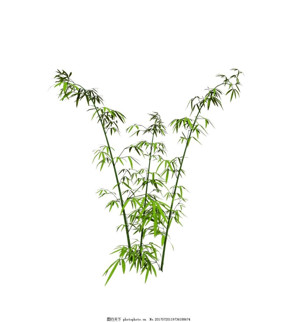 手绘绿色竹子元素