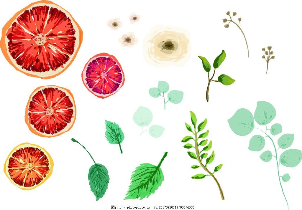 水彩手绘水果茶枝叶矢量素材