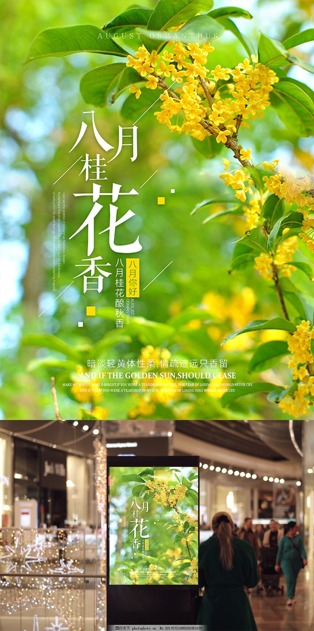 唯美八月桂花香微信微博配图海报设计 简约 你好 秋天 夏天 八月桂花开