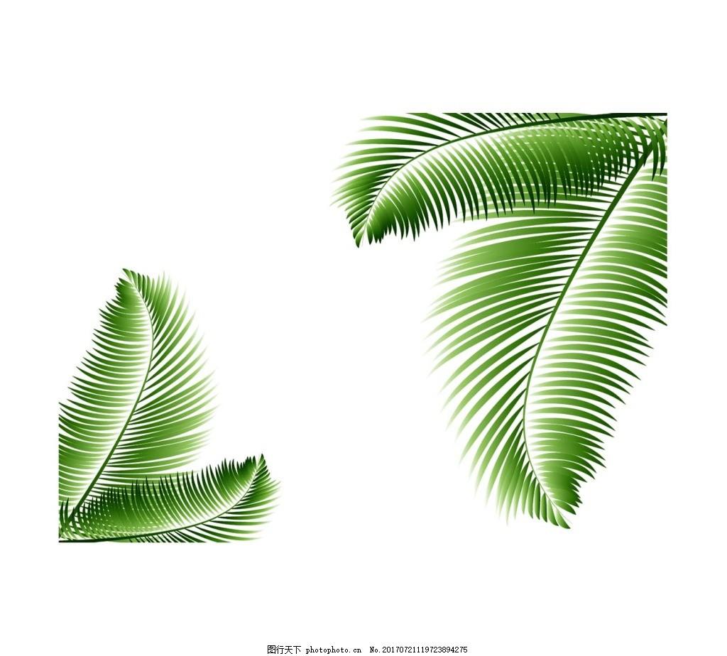 手绘针叶树叶元素 手绘 绿色树叶 小清新 针叶 芭蕉叶 png 免抠 素材