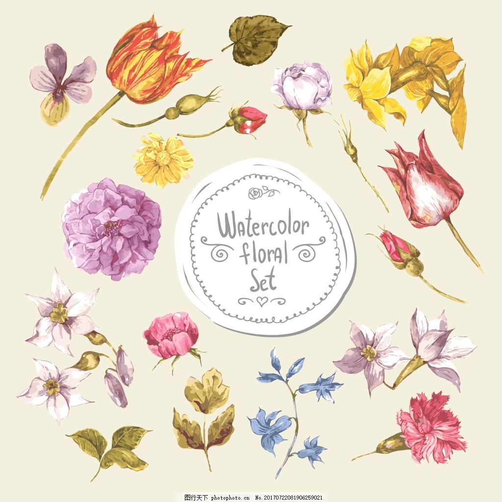 唯美小清新水彩绘植物 花朵 唯美 小清新 水彩 植物 郁金香 文艺 手绘