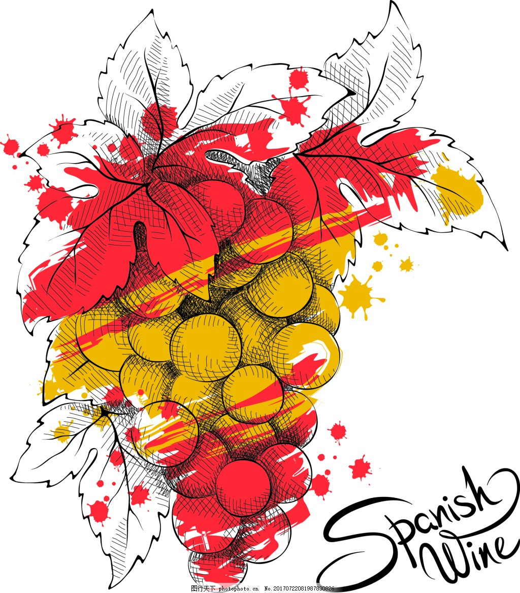 水墨绘水果葡萄插画 手绘 水彩绘 夏天